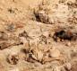 العثور على مقبرة جماعية لضحايا قتلهم داعش فى كركوك