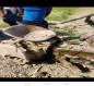 بالصور.. انفجار ثلاث عبوات ناسفة شمال غرب كربلاء